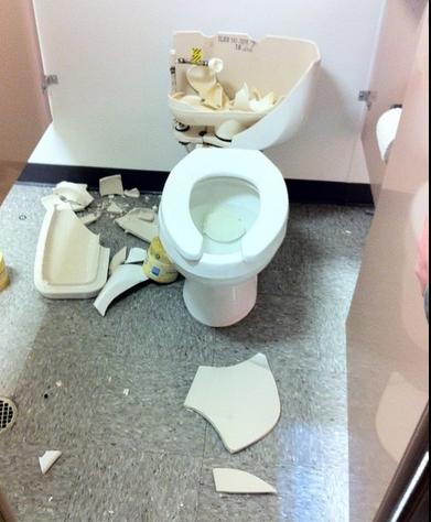 seo.com toilet explosion